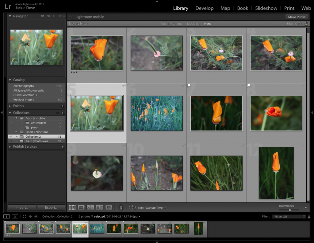 image management in Adobe Lightroom