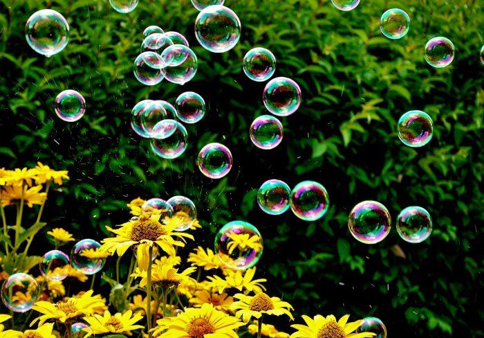 soap bubbles in nature